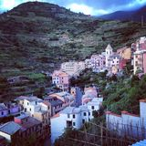 Dramatic Hillside Terrace Farms Rise Above Manarola Royalty Free Stock Photos