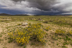 Dramatic landscape with rain clouds over the valley Royalty Free Stock Images