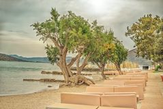 Dramatic landscape with sea beach on the Mirabello Bay, Crete. Dramatic landscape with a deserted sea beach with sun beds and juniper trees on the Gulf of Stock Image