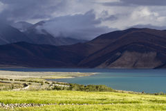 Dramatic light on lake Pangong, India Royalty Free Stock Image