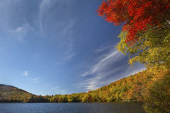 Dramatic, low perspective of fall foliage, Russell Pond, New Ham Royalty Free Stock Photo