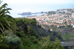 Dramatic Madeira Hillside View and Red Roof Tops Stock Image