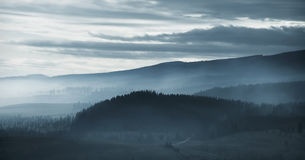 Dramatic misty mountain forest at dawn Royalty Free Stock Image