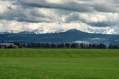 Summer view to the green meadow with simetrice spaced roads , Tatra mountains,  Poland, Europe. Dramatic morning scene of green meadow with simetrice spaced royalty free stock photography