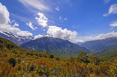 Dramatic Mountains from an Alpine Trail Stock Image