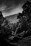 Dramatic Pastoral Landscape Royalty Free Stock Image