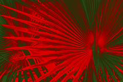 Dramatic pattern in palmetto leaves with Christmas colors red an Royalty Free Stock Images