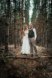 Dramatic picture bride and groom on the background of leaves  forest Stock Image