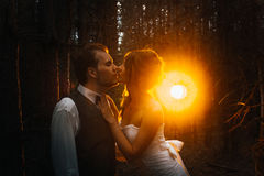 Dramatic picture bride and groom on the background of leaves forest backlight Royalty Free Stock Image