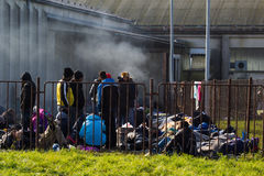Dramatic pictures from the Slovene refugee crisis. Stock Photos
