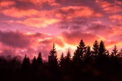 Dramatic purple sky Stock Image