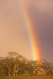 Dramatic Rainbow California Valley Landscape Rain Falling Royalty Free Stock Photo