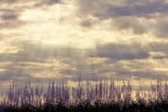 Dramatic rays of light shining through dark clouds Stock Photo