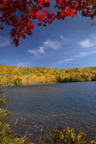 Dramatic red maple branches over Russell Pond, Lincoln, New Hamp stock photography