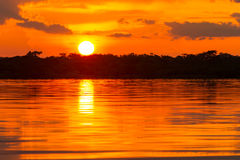 Dramatic Red Sky In Amazonian Jungle Ecuador Royalty Free Stock Images