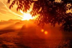 Dramatic Red Sunrise. Picture of a dramatic red sunrise, shot in september Bavaria, Germany; with a tree in the foreground and a red foggy sunrise landscape in Royalty Free Stock Photos