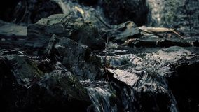 Dramatic Rocky Stream Flowing Closeup stock video