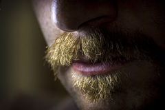 Dramatic Serious Mustache Stock Image