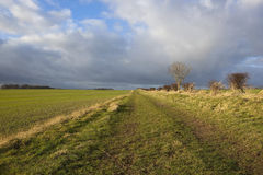 Dramatic skies over bridleway Royalty Free Stock Images