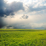Dramatic sky over field Royalty Free Stock Images