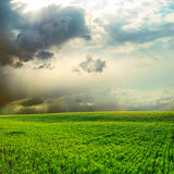 Dramatic sky over green field Stock Photography