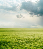 Dramatic sky over green field Royalty Free Stock Photography