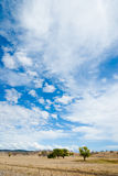Dramatic Sky Royalty Free Stock Image