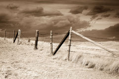 Dramatic sky on Rural grasslands, Colorado, United States, sepia version Royalty Free Stock Photo