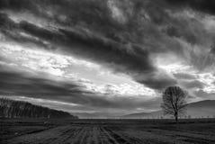 Dramatic skyline Stock Photo