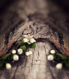 Dramatic Spring flowers on a rustic wooden background. Blurred s Royalty Free Stock Photography