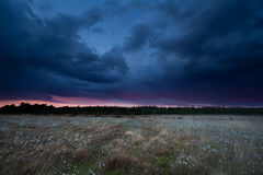 Dramatic storm sky over marsh at sunset Stock Image