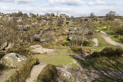 Dramatic structures at Brimham Rocks, Yorkshire in England. View of many of the rock structures at Brimham Rocks, North Yorkshire, England, UK on a sunny Spring Stock Image