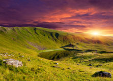Dramatic summer landscape Stock Images
