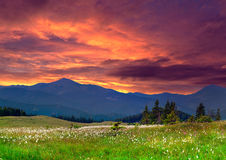 Dramatic summer landscape in the  mountains Royalty Free Stock Photo