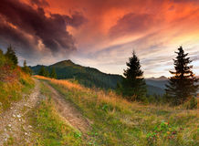 Dramatic summer landscape in the mountains Royalty Free Stock Image