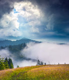 Dramatic summer scene in the foggy mountains Royalty Free Stock Photos