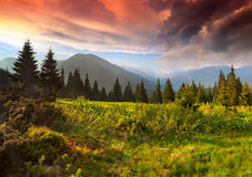 Dramatic summer sunset in the mountains. Stock Photo
