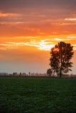 Dramatic sun set Stock Images