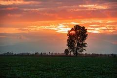Dramatic sun set Royalty Free Stock Image
