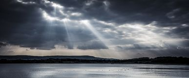 Dramatic sunlight over reservoir with wildlife on sparking water Stock Photos