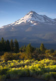 Dramatic Sunrise Light Hits Mount Shasta Cascade Range Californi Stock Image