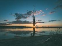 Dramatic sunrise over the calm river - vintage effect. Dramatic sunrise over the calm river in spring. sun showing through the trees. Daugava, Latvia - vintage Royalty Free Stock Image