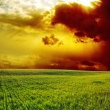 Dramatic sunset Stock Image