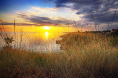 Dramatic sunset at cape Fiolent with bush and grass at foregroun Royalty Free Stock Photos