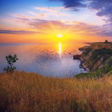 Dramatic sunset at cape Fiolent with bush and grass at foregroun Royalty Free Stock Photography