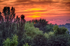 Dramatic sunset and green forrest. Red dramatic sunset with orange sky and green forrest Stock Image
