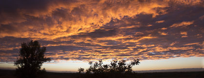 Dramatic sunset like fire in the sky with golden clouds. panoram Stock Photography
