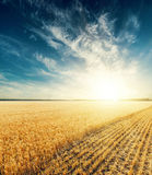 Dramatic sunset over field Stock Photography