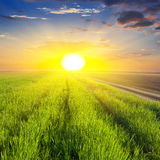 Dramatic sunset over a  fields Stock Images