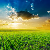 Dramatic sunset over green field Stock Image